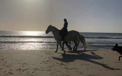 REITEN IN TARIFA – EIN KINDHEITSTRAUM WIRD WAHR