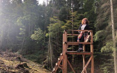 UNTERHALB DER BURGRUINE WALLENSTEIN …